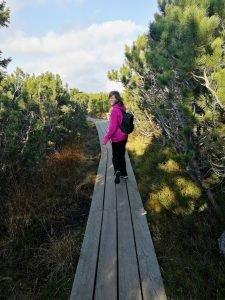 lovrenska_jezera_a_trip_in_slovenia