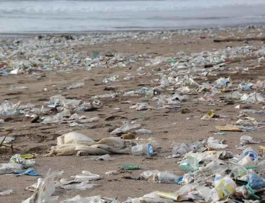 plastic-or-planet-bye-plastic